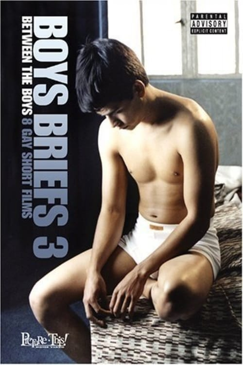 Boys Briefs 3: Between the Boys